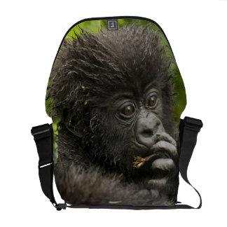 Mountain Gorilla, baby riding on mothers back Messenger Bag