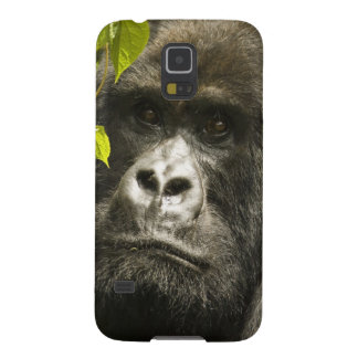 Mountain Gorilla, Gorilla beringei beringei, Galaxy S5 Cover