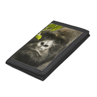 Mountain Gorilla, Gorilla beringei beringei, Trifold Wallets