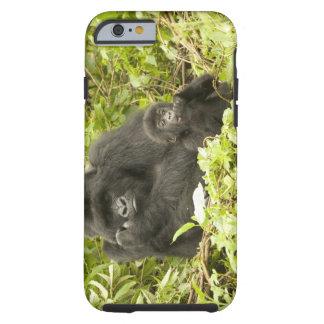 Mountain Gorilla, Gorilla beringei (formerly G. Tough iPhone 6 Case