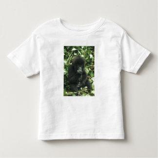 Mountain Gorilla, (Gorilla gorilla beringei), Toddler T-Shirt