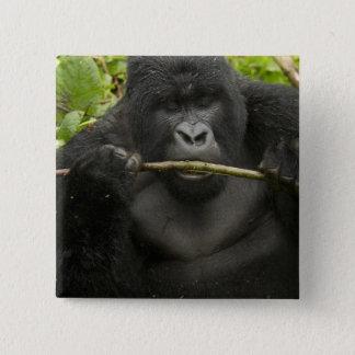 Mountain Gorilla, using tools 15 Cm Square Badge