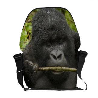 Mountain Gorilla, using tools Courier Bag