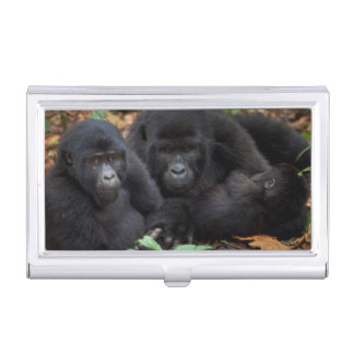 Mountain Gorillas, Volcanoes National Park Business Card Holder