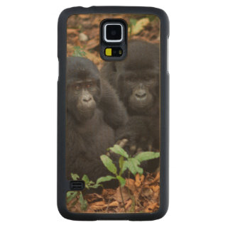 Mountain Gorillas, Volcanoes National Park Carved Maple Galaxy S5 Case