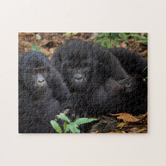 Mountain Gorillas, Volcanoes National Park Jigsaw Puzzle