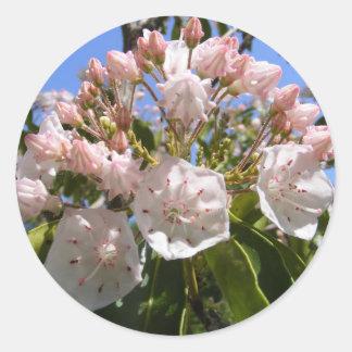 Mountain Laurel 46 ~ sticker