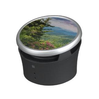 Mountain Laurel at Sunrise Speaker