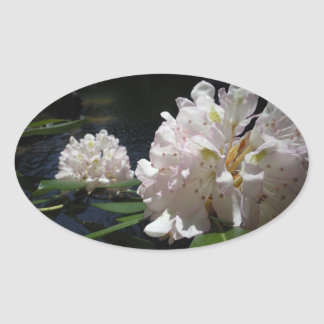 Mountain Laurel by a Creek Oval Stickers