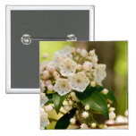 Mountain Laurel in bloom Buttons