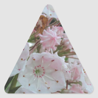 Mountain Laurel Products Triangle Stickers
