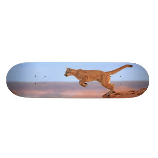 Mountain Lion 20 Cm Skateboard Deck