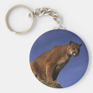 Mountain Lion Basic Round Button Key Ring
