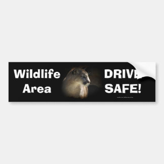 Mountain-Lion Cougar Driver Safety Bumpersticker Bumper Sticker