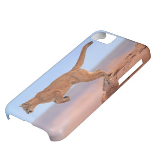 Mountain Lion iPhone 5C Case