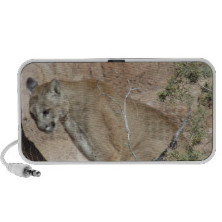 Mountain Lion iPhone Speaker