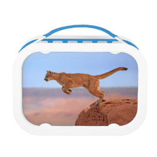 Mountain Lion Lunch Box