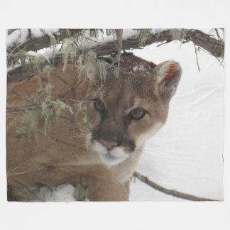 Mountain Lion on Fleece Blanket