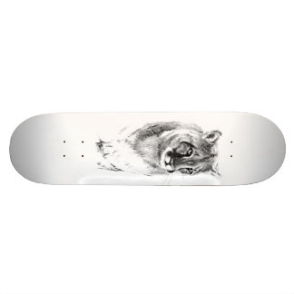 mountain lion skate board
