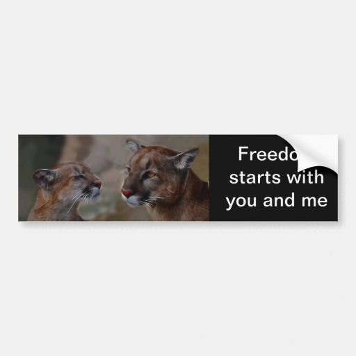 Mountain lions in love bumper stickers