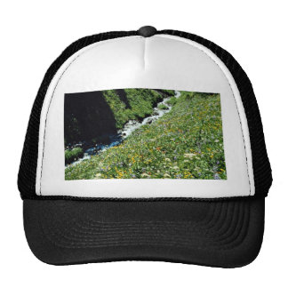 Mountain meadow with creek, British Columbia, Cana Mesh Hat