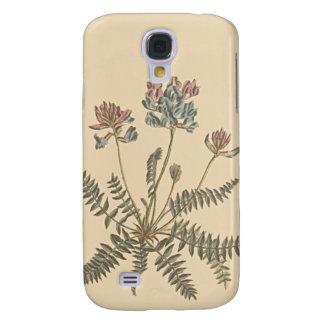 Mountain Milkvetch Botanical Illustration Galaxy S4 Case
