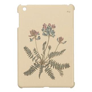 Mountain Milkvetch Botanical Illustration iPad Mini Covers