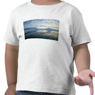 Mountain Ranges around Port Lockeroy Tee Shirts