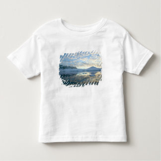 Mountain Ranges around Port Lockeroy Toddler T-Shirt