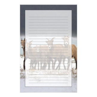 Mountain Sheep Family Stationery