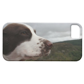 Mountain Side Working Cocker Spaniel Barely There iPhone 5 Case