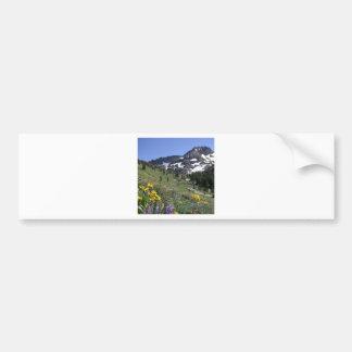 Mountain Spring Bloom Flowers Bumper Sticker