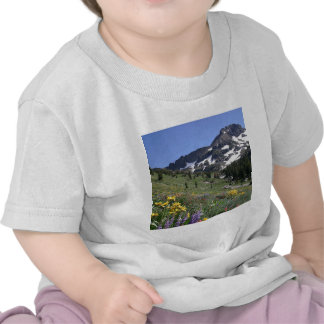 Mountain Spring Bloom Flowers Tee Shirt