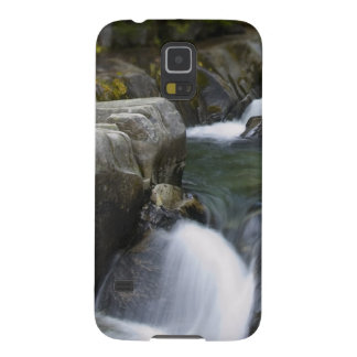 Mountain stream galaxy s5 cases
