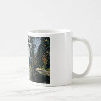 Mountain stream in the Vosges Basic White Mug