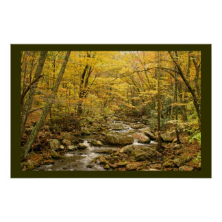 Mountain Stream Poster