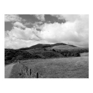 """""""Mountain Trail"""" Postcard"""