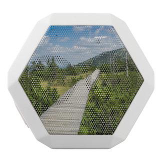 Mountain Tundra Wooden Path Landscape