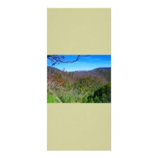Mountain View Rack Card Design