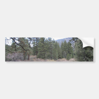 Mountain Views Bumper Sticker