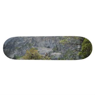Mountain Wall Skateboard Deck