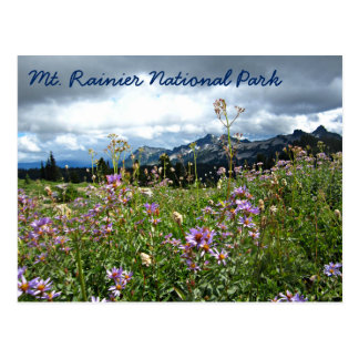 Mountain Wildflowers at Mt. Rainier National Park Postcard