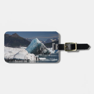mountains and ice in Alaska Luggage Tag