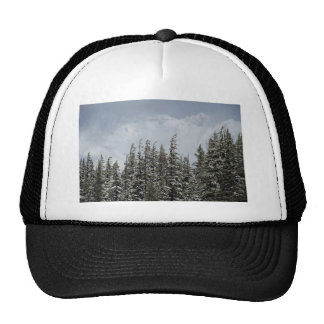 Mountains and Snow Postcard Cap