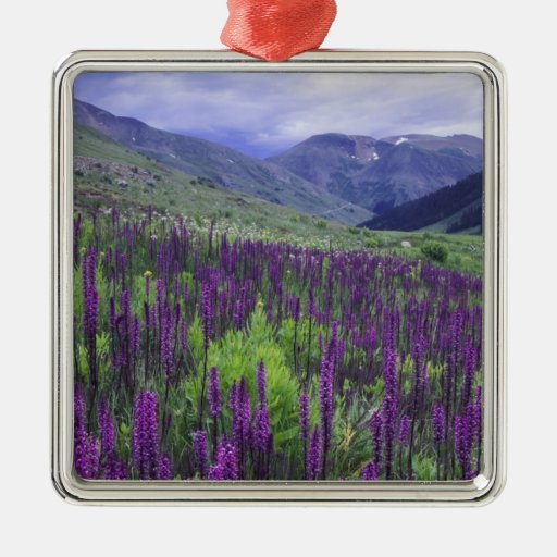 Mountains and wildflowers in alpine meadow, 2 christmas tree ornament