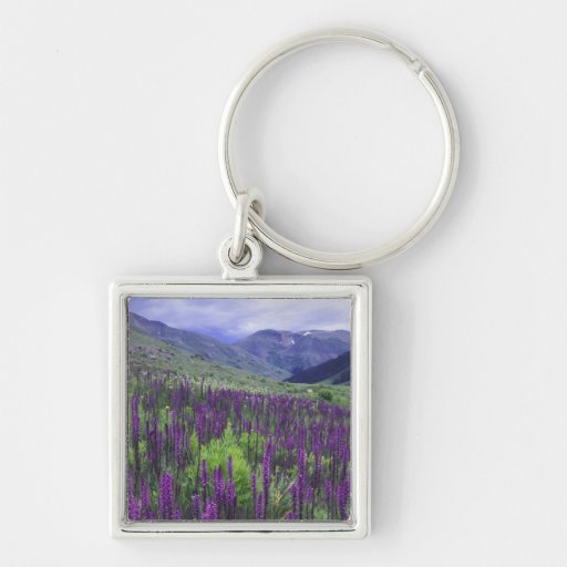 Mountains and wildflowers in alpine meadow, 2 keychains