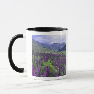 Mountains and wildflowers in alpine meadow, 2 mug