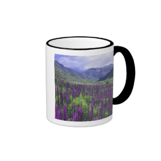 Mountains and wildflowers in alpine meadow, 2 ringer mug