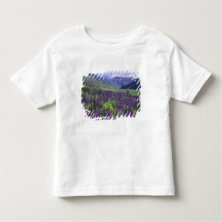 Mountains and wildflowers in alpine meadow, 2 shirts