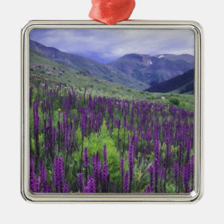Mountains and wildflowers in alpine meadow, 2 Silver-Colored square decoration